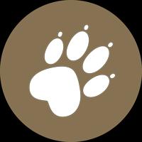 Hund_Icon_WhiteBG